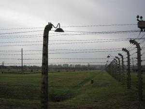 AuschwitzFences